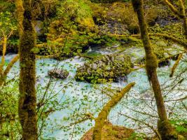 River 1 #109371