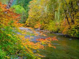 River 4 #109374