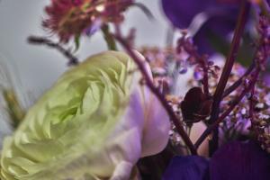 Botanical Arrangement 3 #109818