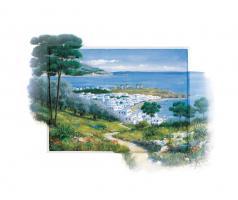 Overlooking The Bay #11729