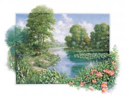 The Pond I #11730