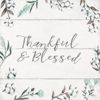 Blessed VI v2 #43152