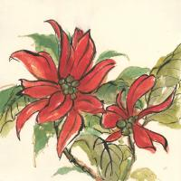 Poinsettia II #44519