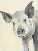 Oink #45728
