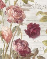 French Roses II #46485