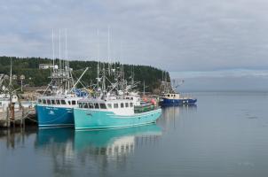 Bay of Fundy I #47837