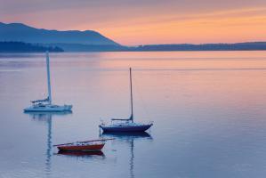 Bellingham Bay #47841