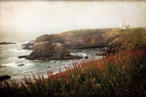 Coastal Mist #47843