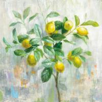 Lemon Branch #48295