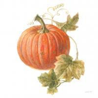 Floursack Autumn VIII on White #48783