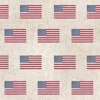 Patriotic Dark Pattern V #50677