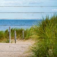 Beach Ready 4 #51395
