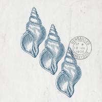 Sea Blues 4 #51539