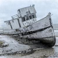 Shipwrecked Minnow 1 #51720