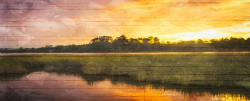 Marsh Sunset #51776
