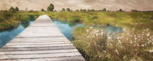 On The Marsh #51777