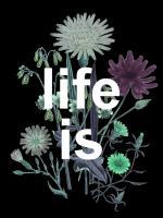 Life Is Beautiful #52090