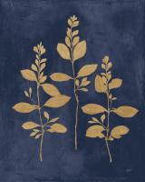 Botanical Study IV Gold Navy #56064