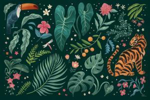 Jungle Love I #56088