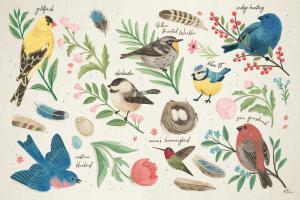 Bird Study I #58594