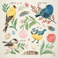 Bird Study II #58595