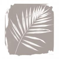 Nature By The Lake - Frond II Sq #60544