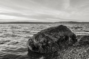 Puget Sound, Browns Point #98190