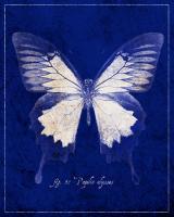Blue Mountain Butterfly Cyanotype #87520
