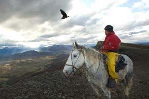 Gaucho and Condor Natales Chile #82746
