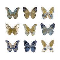 Butterfly Study I #JBC113351