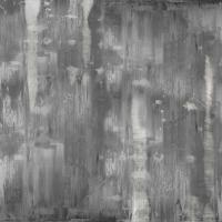 Variations in Grey #JTU114566