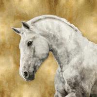 White Stallion on Gold #MRR113460