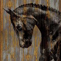 Horse I #MRR7377