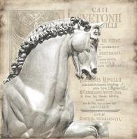 Renaissance IV #OJ111470