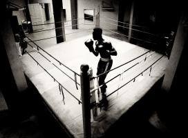 Shadow Boxer 4 #86090
