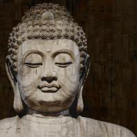 Meditative II #TY112086