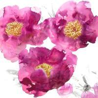 Pink Bloom II #VAU112199