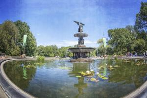 Bethesda Fountain Central Park #92330