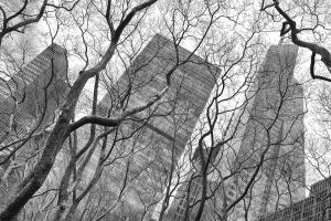 New York City Skyscrapers 1 #92344