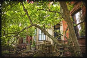 Back Bay Row Houses #92356