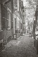 Colonial Street #92362