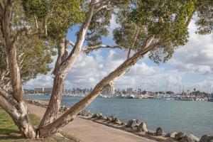 San Diego Harbor #92369