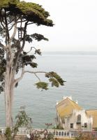 Alcatraz Architecture #92380