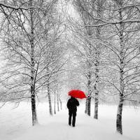 Der einsame Weg #IG 5970