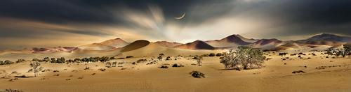 Namib Sandsea II #IG 9126