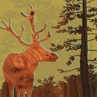 Deer 2 #87208